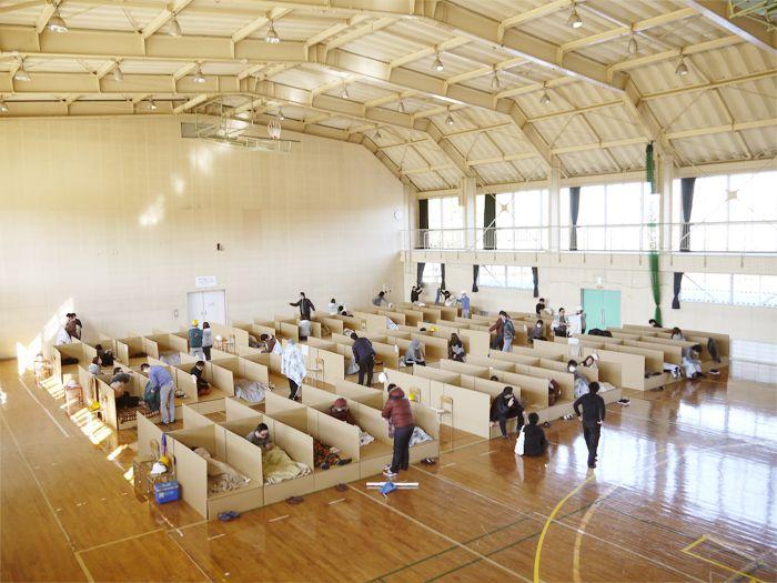 協和ダンボールの避難所用ダンボールベッド 通販メインの写真